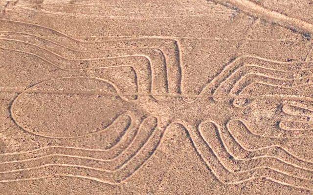 Tour Lineas de Nazca Terrestre
