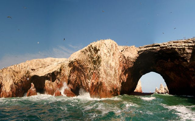 Full Day Paracas – Ica – Islas Ballestas