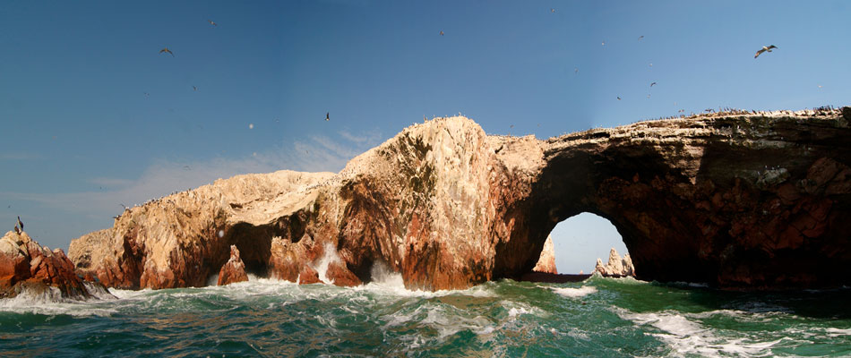 Full Day Paracas e Islas Ballestas - Tour Ica